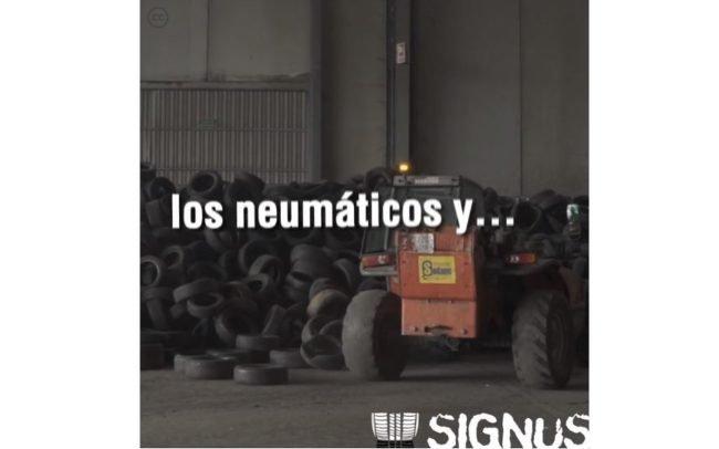 Las mil y una vidas del neumático reciclado - Signus césped artifical