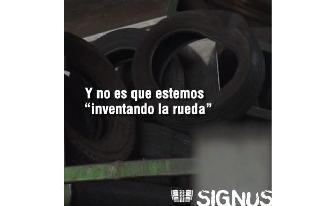 Moda y neumáticos - Signus